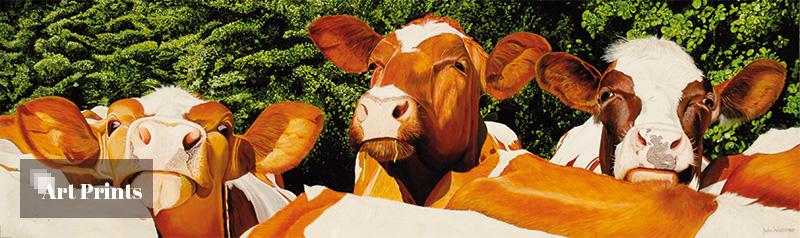 Koeien Pennings