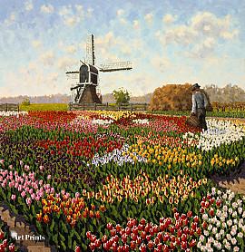 Tulpenveld Voorhout