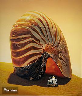 Ontdek de Nautilus