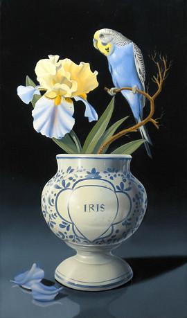 La perruche bleue à l'iris