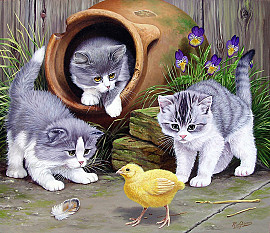 Drie jonge katjes met kuiken