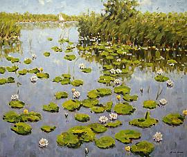 Waterlelies in Nieuwkoop